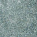 263 - 10g Size 11/0 Miyuki seed beads in Seafoam lined Crystal