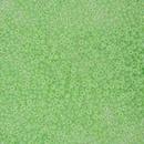 Size 11 Mint Green Ceylon Miyuki seed beads 520