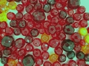 25g of faceted beads in Dark Red from Preciosa