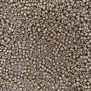 10g Size 8/0 Galvanised Champagne Miyuki seed beads 4204