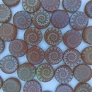 6 x 14mm Laser etched Red Disc bead with Iridescent Shell