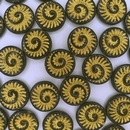 4 x 18mm Fossils in Black/Gold