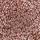 30 x StormDuo in Vintage Copper