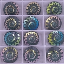 14mm Rivoli in Emerald AB with Laser Etched Shell pattern (Swarovski)