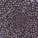 50 x diabolo beads in Pastel Dark Brown