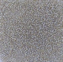 1001 - 10g Size 11/0 Miyuki seed beads in Silver lined Crystal AB